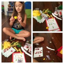 A Copa do Mundo Chegou – Box Joanninha