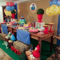 Festa Infantil: Fazendinha Galinha Pintadinha