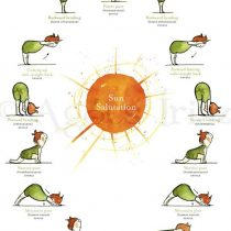 Ioga: Desafio da Saudação ao Sol – Surya Namaskar