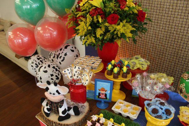 Festa Infantil: Fazendinha do Téo